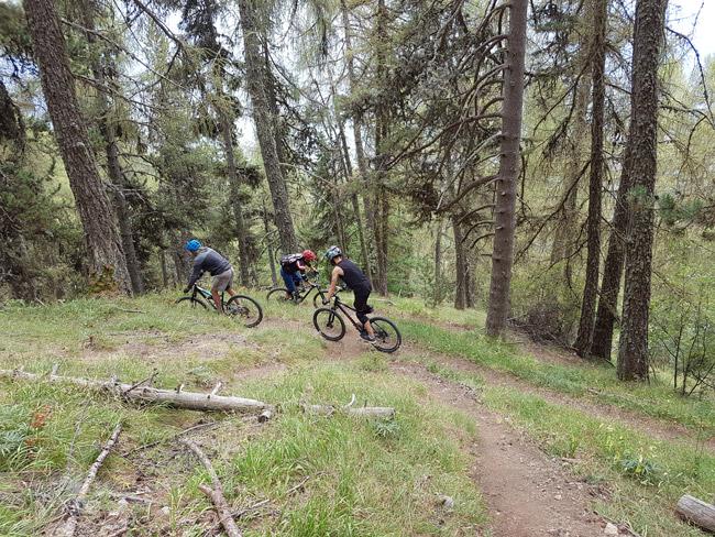 Mountainbiken bei AF-Reisen